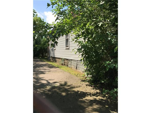 liz-tintinalli-2266-leland-detroit-house-home-neighborhood (3)