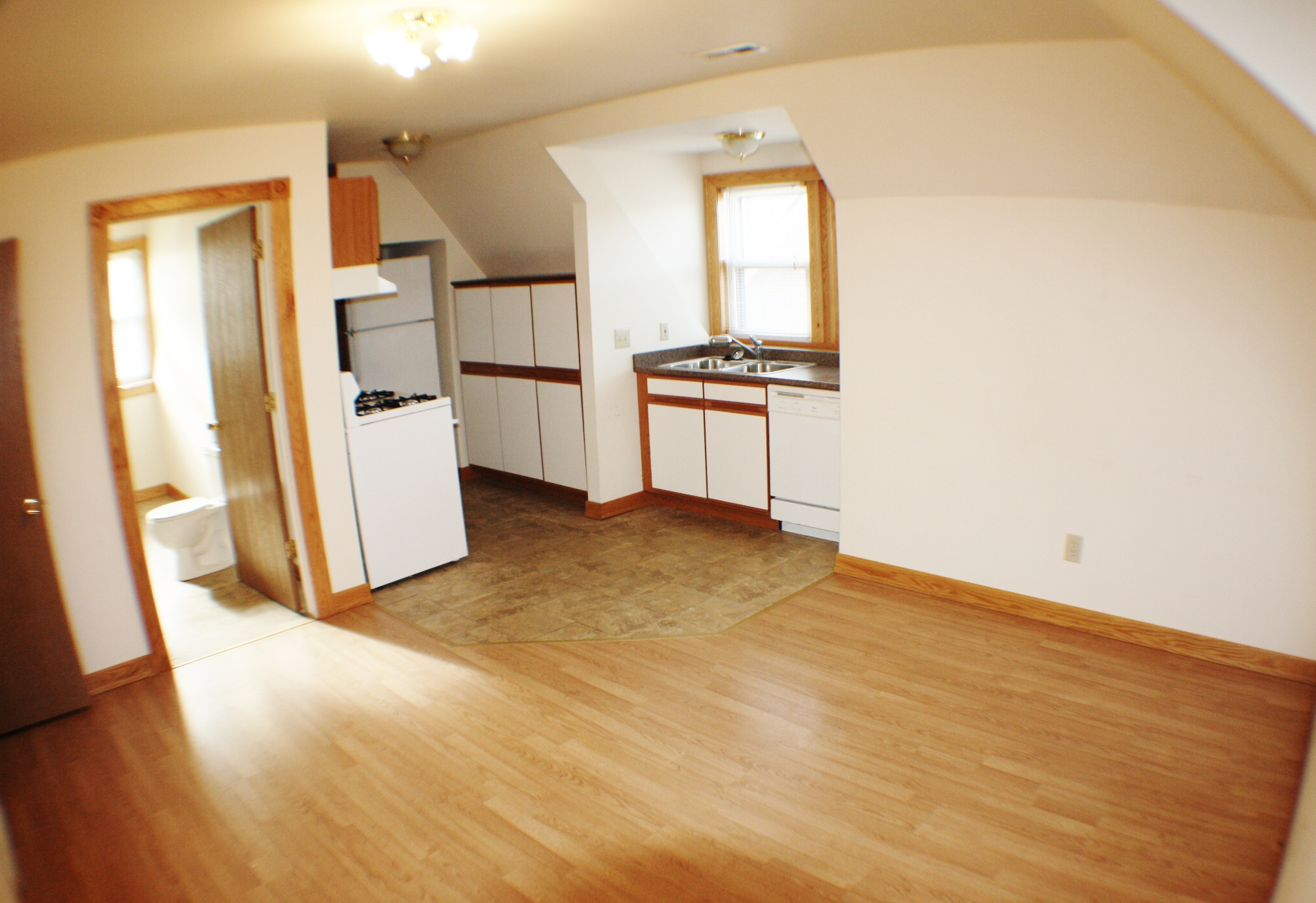 liz-tintinalli-295 E FERRY Street Unit#1-midtown-apartment-detroit_5443