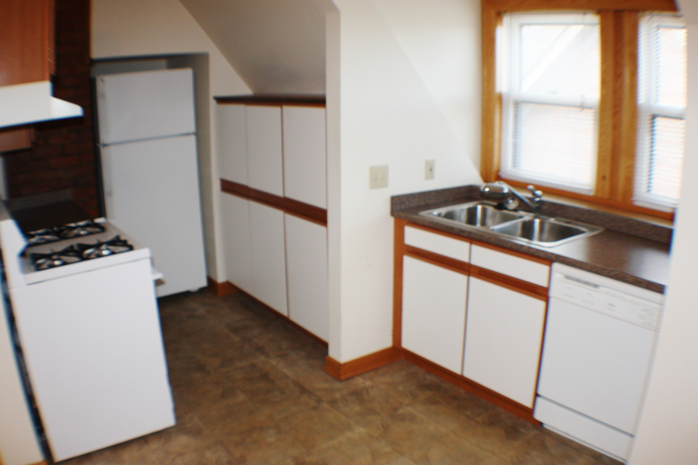 liz-tintinalli-295 E FERRY Street Unit#1-midtown-apartment-detroit_5444