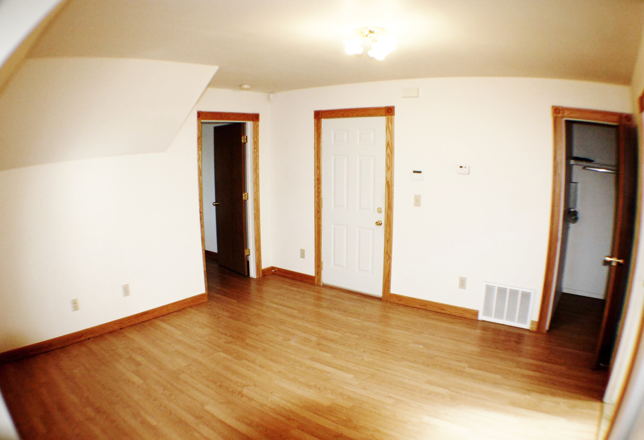 liz-tintinalli-295 E FERRY Street Unit#1-midtown-apartment-detroit_5451