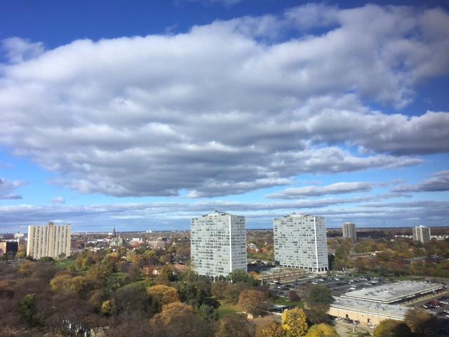 liz-in-detroit-realty-1300-east-lafayette-park-condo_0755